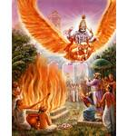 Lord Vishnu Appears Personally at Fire Sacrifice