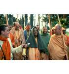Prabhupada Says Something Funny on a Morning Walk