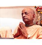 Srila Prabhupada in Vrindaban, Prayerful Mood