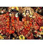 Sri Sri Radha Govinda Close up -- New York, NY
