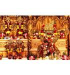 Sri Sri Radha Giridhari - Hare Krishna Dhama - Houston, TX