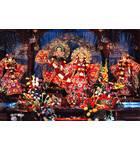 Sri Sri Radha Partha-sarathi - New Delhi, India