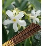 Jasmine Supreme Incense -- (225 gram pack)